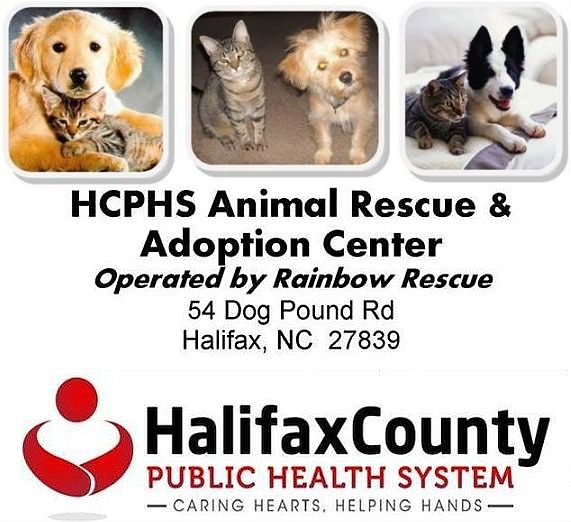 Halifax County Animal Rescue and Adoption Center, NC